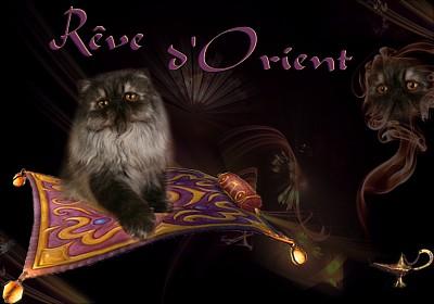 REVE D'ORIENT